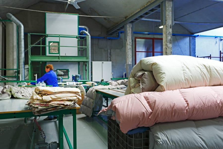 Reparto bedding .JPG